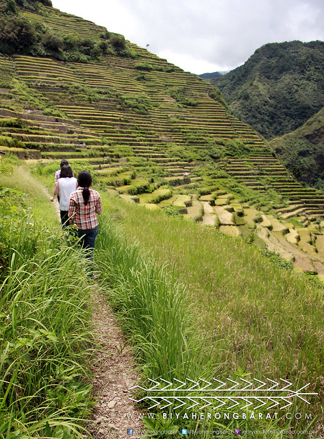 Trekking Batad