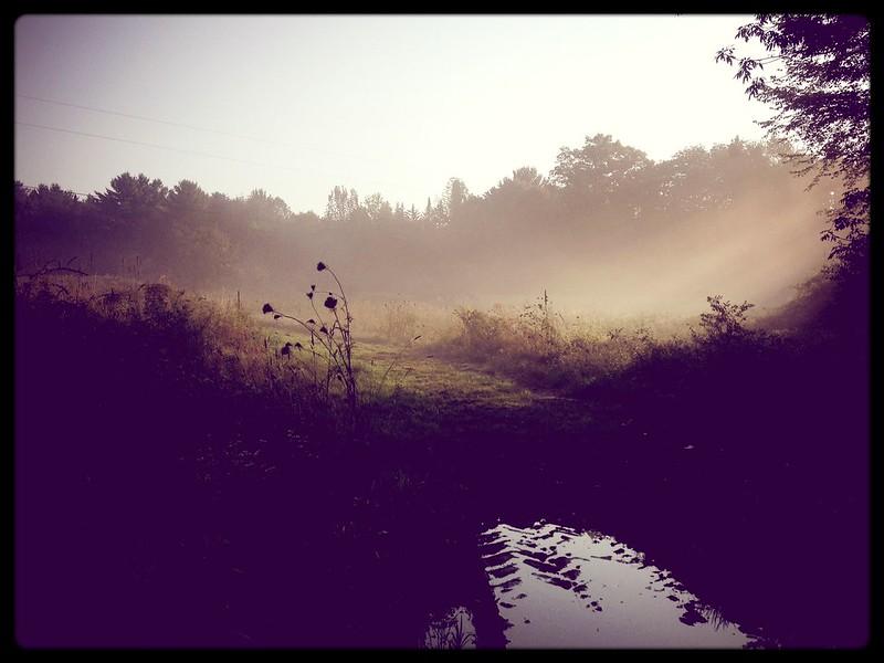 Beautiful Brookfield Morning1