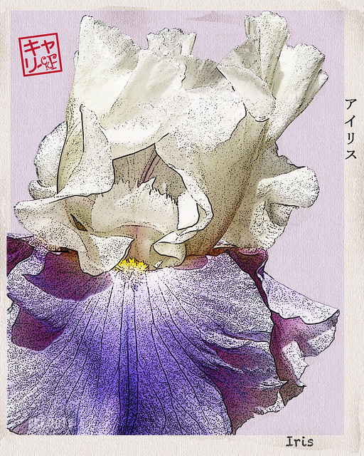 Iris - Woodblock