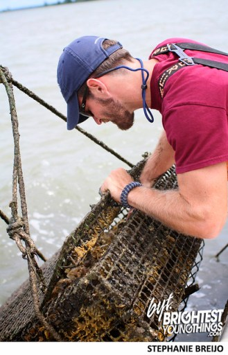 Rappahannock Regional Oysters VA Photos Brightest Young Things21