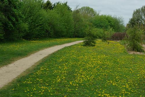 20130512-12_Cawston Grange - Perimeter Path - Bridleway by gary.hadden