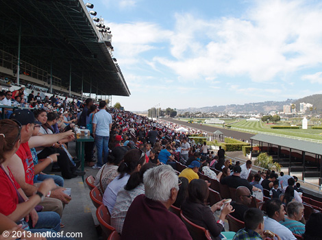 090413goldengatefields04