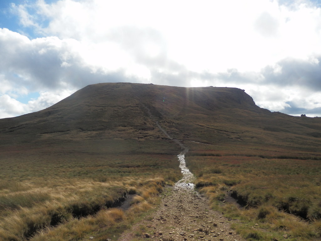 Looking back to Kinder
