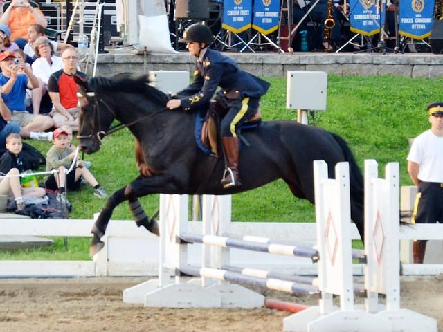 Horse Jump 1