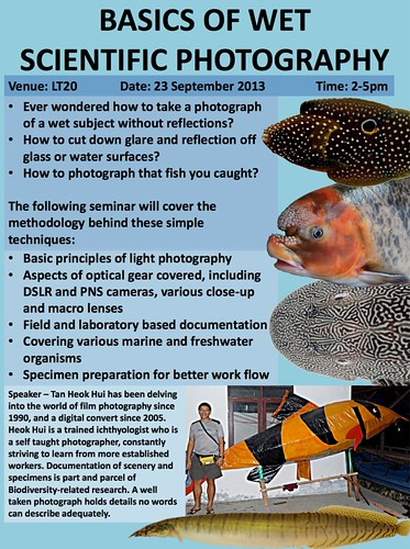 Wet Scientific Photography-THH-Sep2013-2.pdf (1 page)