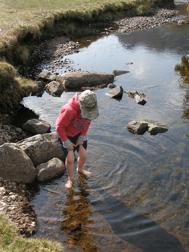 Plodging in the stream