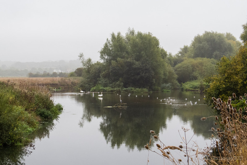 A tranquil scence on the Stour