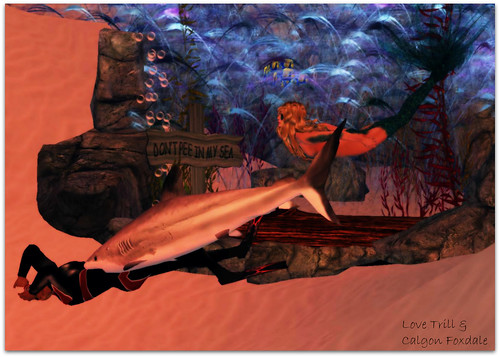 Undersea4_002