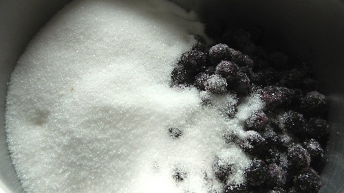 Partridgeberry Ice Cream 3