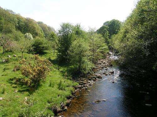 River Roeburn