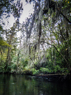 South Edisto River-102
