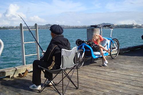 Torpedo Bay Fishing