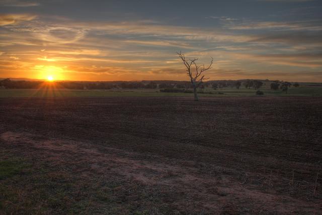 Sunset on Somerton Road 2012-06-19 (_MG_9633-41)