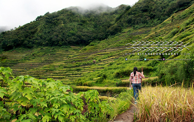 Hiking Batad Rice Terraces Ifugao
