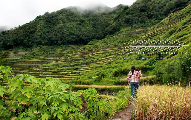 Hiking Batad Rice Terraces Ifugao