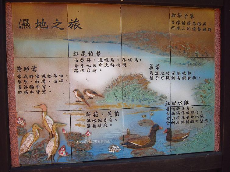 大樹舊鐵橋生態公園 (45)