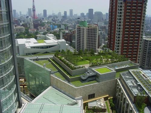 Beneficios de los techos verdes