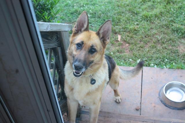 Let me in?