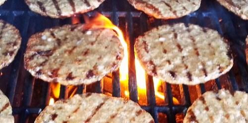 Burger Catering - Sommerfest in den Rheinauen in Bonn
