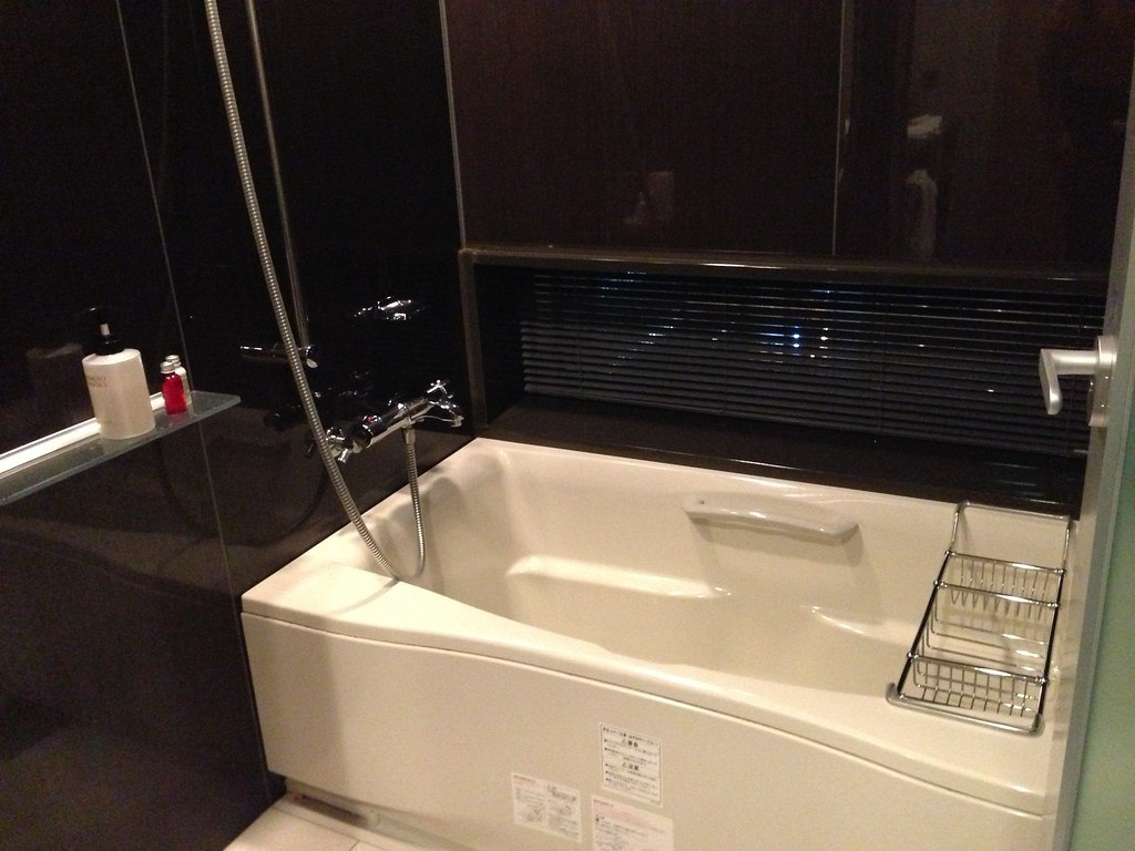 Bathtub and Shower in the Room