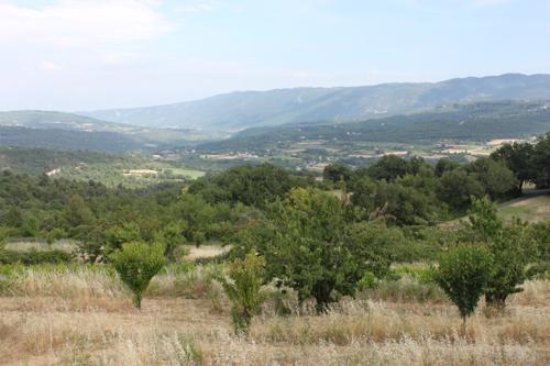 IMG_5790-Apt-landscape
