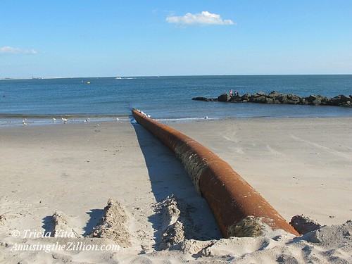 Coney Island Beach Nourishment