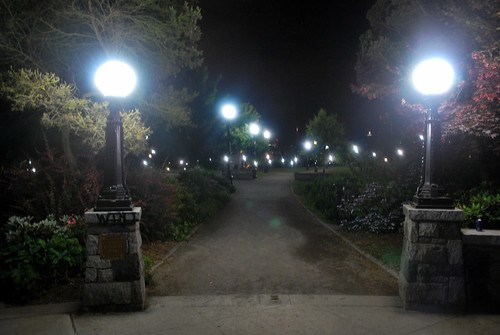 White Light at Midnight, Cal Anderson Park