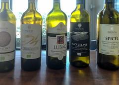Weißweinprobe