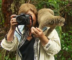 Grand-Mère Gloria avec un Lémurien qui prends des images de Lémuriens...