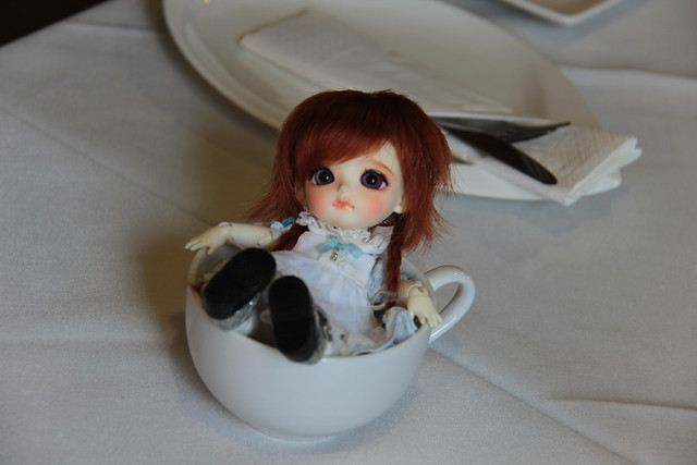 Dollfie Dream Meetup at T-Buds, Toronto