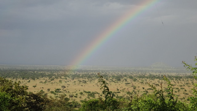 Rainbow over the Serengeti