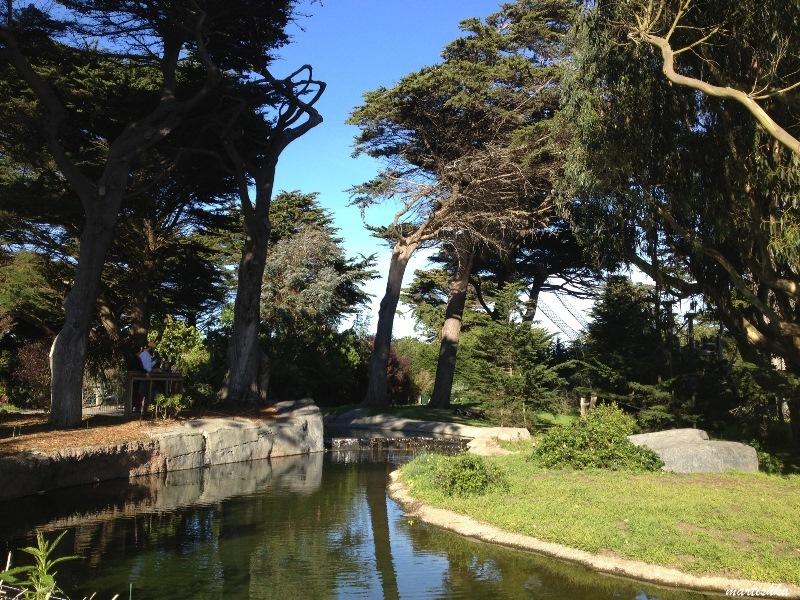 San Francisco Zoo (8)