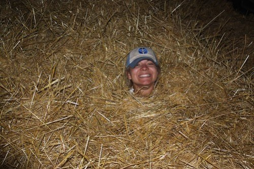 Rather than sand on a beach, we use straw in a wind row!