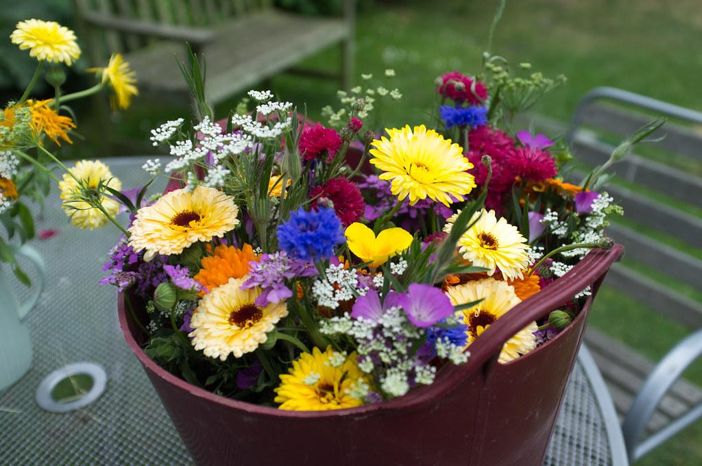flowers for Nanny's birthday