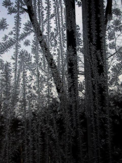 frosty window 4