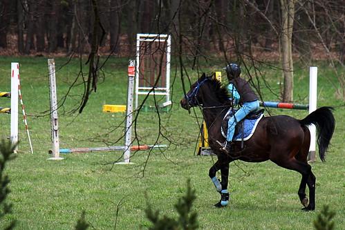 Horse Riding practice, Loučeň