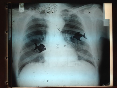 Feeling fishy by Simon Sharville