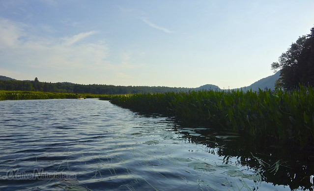 view 0000 Sacandaga River, Adirondack, NY, USA