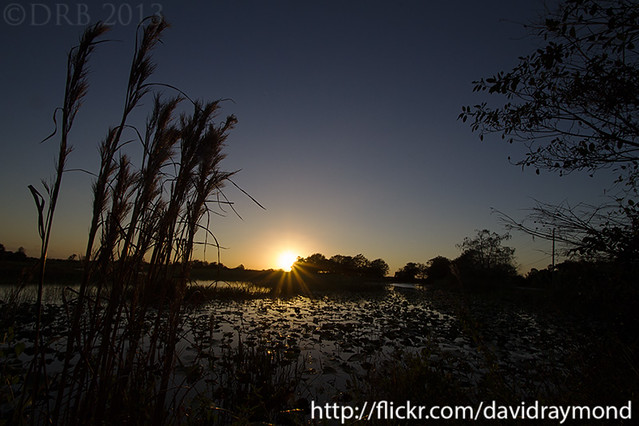 Florida Landscape Photograph