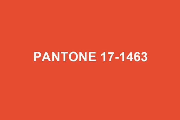 pantone-2012-color-of-the-year-tangerine-tango-001