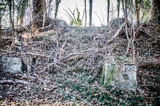 Pacolet Hill Overgrown Steps