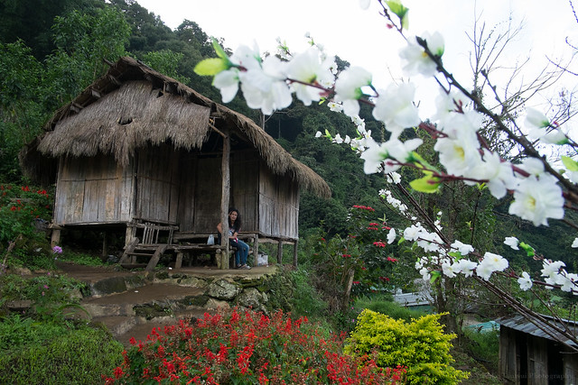 Ban Doi Pui - Hmong hill-tribe village