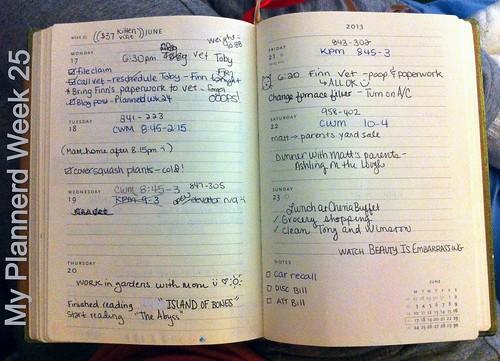 My Plannerd Week 25