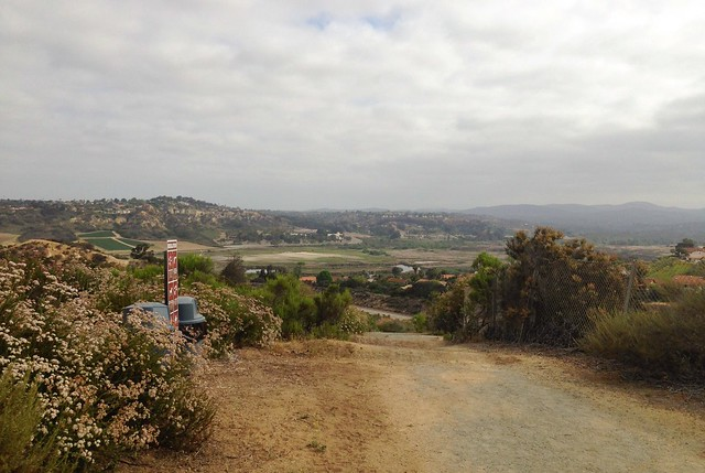Looking over San Elijo