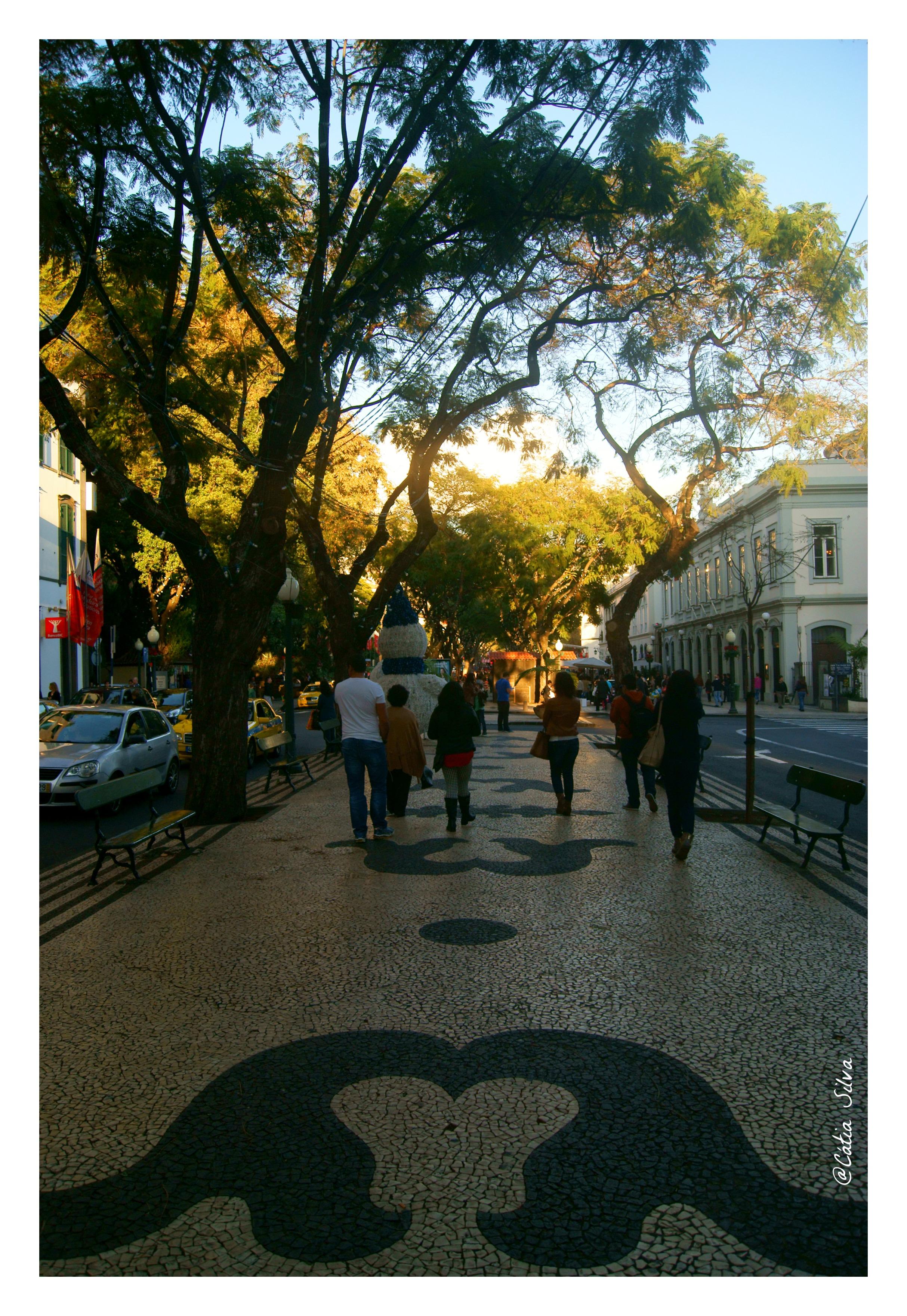 Funchal - Madeira (23)