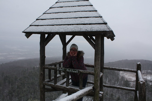 One of the many lookouts--were it not foggy/cloudy/snowy this would be a stunning vista of the Catskills