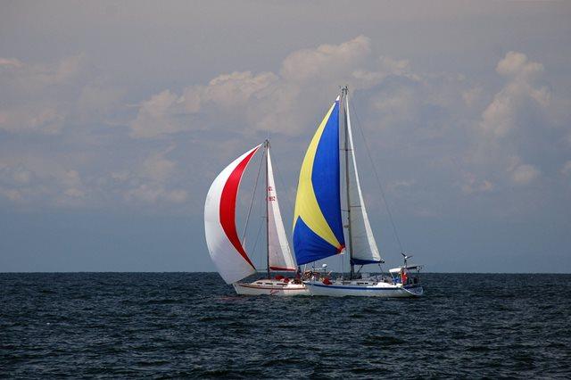 spinnakers asymmetric sail sailing downwind