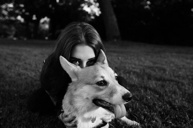 dog_park_aug2013_web-006