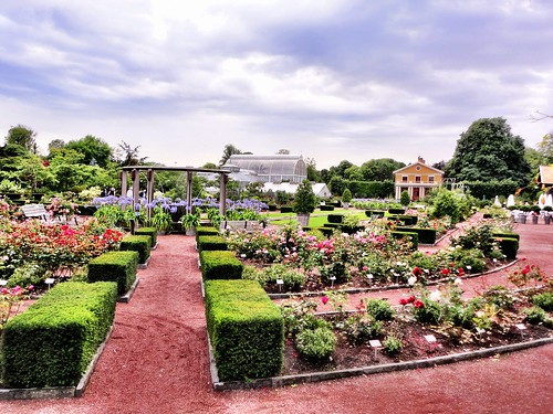 Gothenburg rose garden by SpatzMe