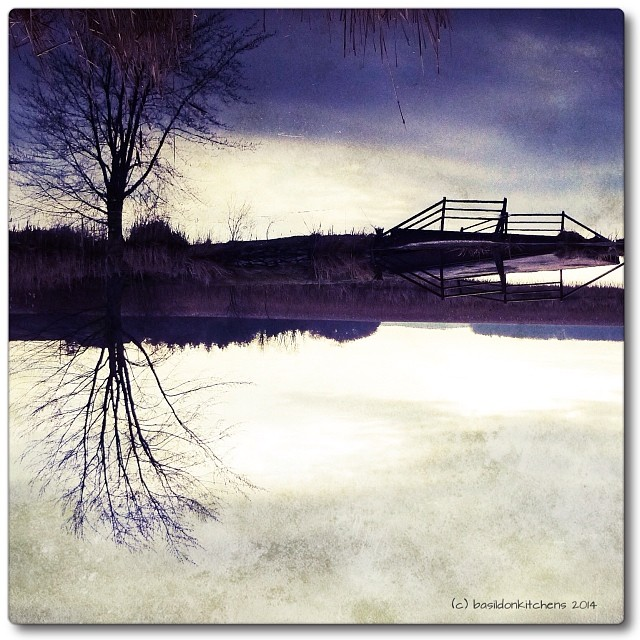 7/1/2014 - upside down (from the archives due to inclement weather) playing with 'Phototoaster' #fmsphotoaday #upsidedown #reflection #princeedwardcounty #phototoaster